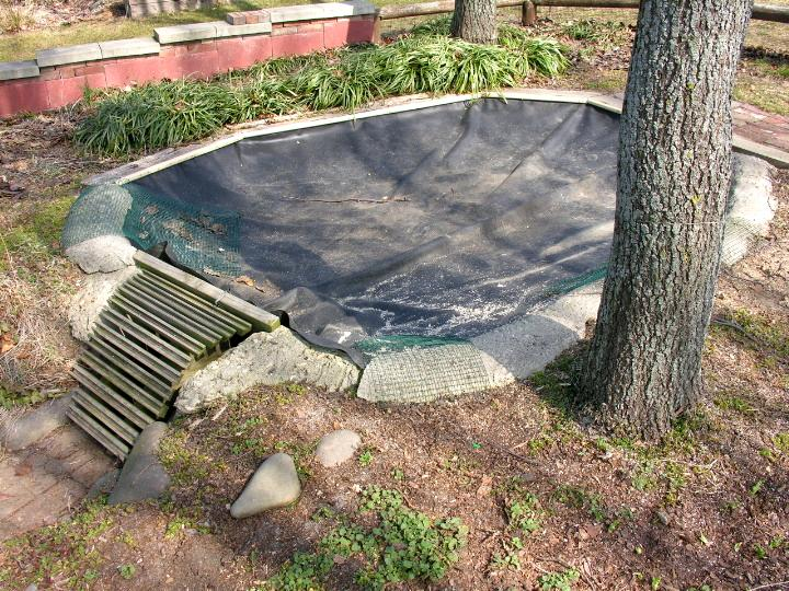 how to make a backyard turtle pond online image